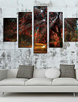 Художественная печать Цветочные мотивы/ботанический Пастораль,5 панелей Горизонтальная С картинкой Декор стены For Украшение дома