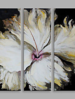 Abstract Oil Painting The Beige Flower Set of 3 Framed Handmade Oil Painting For Home Decoration