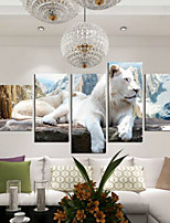 Art Print Animal Modern,Five Panels Horizontal Print Wall Decor For Home Decoration