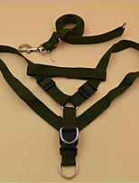 Colliers Harnais Portable Ajustable Couleur Pleine Térylène