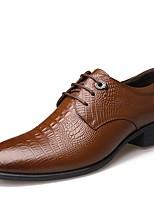 Для мужчин Туфли на шнуровке Удобная обувь Кожа Весна Лето Осень Зима Повседневные Для вечеринки / ужина Для прогулок Удобная обувь