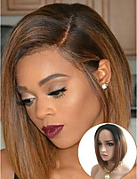 Fashion Ombre Wig with Dark Root Black Brown Capless Wig Heat Resistant
