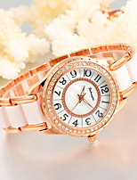 Feihongda Women's Fashion Wrist watch Unique Creative Watch Casual Quartz Alloy Plastic Band Charm Luxury Elegant Cool  Crystal Diamond Watches