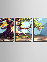 E-HOME Stretched Canvas Art  Ancient Trees Decoration Painting Set Of 3
