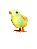 Wind-up Toy Chicken Plastics Children's 3-6 years old