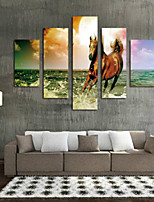 Art Print Animal Modern Five Panels Horizontal Print Wall Decor For Home Decoration