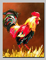 Hand-Painted Modern Abstract Cock Animal Oil Painting On Canvas Wall Art Picture For Home Decoration Ready To Hang