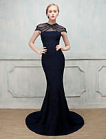 Formal Evening Dress - Beautiful Back See Through Sexy Elegant Trumpet / Mermaid V-neck Sweep / Brush Train Elastic Cotton/Nylon