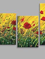 Ручная роспись Цветочные мотивы/ботаническийАбстракция 3 панели Холст Hang-роспись маслом For Украшение дома