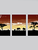 Stretched Canvas Print Animal Modern,Three Panels Horizontal Print Wall Decor For Home Decoration