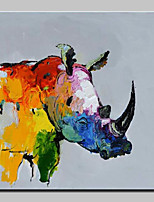 Hand Painted Rhino Oil Painting On Canvas Wall Art Pictures For Home Decoration With Stretched Frame Ready To Hang