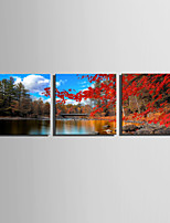E-HOME Stretched Canvas Art Red Maple Leaves On The Lakeshore Decoration Painting Set Of 3