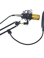BM-800 Condenser Microphone Professional Kit Set Broadcast Studio Recording Mic With Arm Boom Stand Pop Filter Sponge Foam