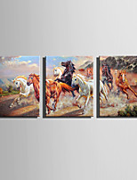 E-HOME Stretched Canvas Art  Running Steed Decoration Painting Set Of 3