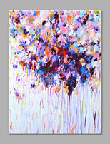 IARTS® Hand Painted Abstract Oil Painting Spring Floral Blossom with Stretched Frame Handmade Oil Painting For Home Decoration
