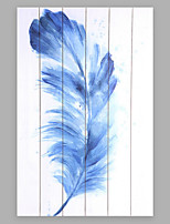 Hand-Painted Abstract Fashion Feather More than Five Panels Canvas Oil Painting For Home Decoration