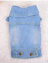 Chien Manteaux Vêtements pour Chien Soirée cow-boy Uni Bleu clair Arc-en-ciel