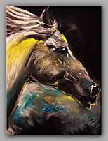 Hand-Painted The Horse Animal  Oil Painting On Canvas Modern Wall Art Picture For Home Decoration