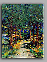 Hand-Painted Abstract Modern Lush Forest  One Panel Canvas Oil Painting For Home Decoration