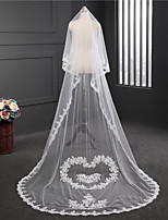 Lady's Elegant Fashion Wedding Veil One-tier Chapel Veils Lace Applique Edge Lace Tulle