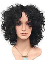 Fashion Afro Loose Black Natural Wigs Side Bang for Women Costume Wigs Cosplay Synthetic Wigs