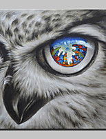 Big Size Hand Painted Falcon City Animal Oil Painting On Canvas Wall Art For Home Decoration No Frame