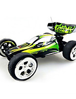 Buggy 1:24 RC Car 2.4G Ready-To-Go 1 x Manual 1 x Charger 1 x RC Car