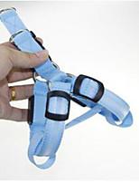 Collar Portable Adjustable Strobe/Flashing Solid Nylon