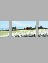 IARTS® Hand Painted Modern Abstract Oil Painting Vintage Summer Country Cottage & White Wildflower Scenery Set of 3 Stretched Frame Picture For Home