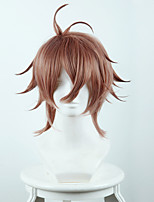 Fate / Apocrypha actor Ziege smoke brown antisense cosplay wig