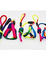 Leash Portable Color Block Nylon
