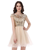 Princess Scoop Neck Short / Mini Tulle Sequined Engagement Cocktail Party Dress