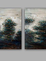 100% Hang-Painted Abstract Landscape Modern / Classic Two Panels Canvas Oil Painting For Home Decoration
