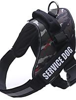 Собака Упряжки Одежда для собак Спорт Буквы и цифры Синий Розовый Камуфляж цвета Светло-синий Черный