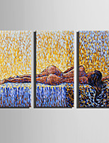 E-HOME Stretched Canvas Art Sleeping Woman Decoration Painting Set Of 3