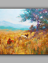 Hand-Painted Abstract  Landscape Leisurely horse One Panel Canvas Oil Painting For Home Decoration
