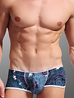 Homme Sexy Push-up Sous-vêtements Ultra Sexy Boxers
