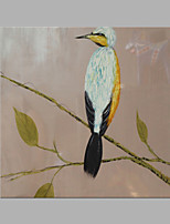IARTS® Hand Painted Modern Abstract Bird on the Branch Light Brown Oil Painting On Canvas with Stretched Frame Wall Art For Home Decoration