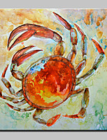 Big Size Hand Painted Crab Animal Oil Painting On Canvas Wall Art For Home Decoration No Frame