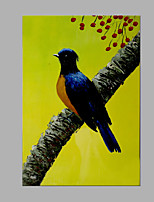 IARTS® Oil Painting Blue Bird on A Branch Wall Art Acrylic Canvas Wall Art For Home Decoration