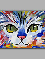 Hand-Painted The Cat Animal  Oil Painting On Canvas Modern Wall Art Picture For Home Decoration