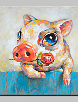 Large Size Hand-Painted Piggy Animal Oil Painting On Canvas Wall Art Picture For Home Decoration No Frame