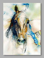 IARTS® Oil Painting Modern Horse Portrait Abstract Art Acrylic Canvas Wall Art For Home Decoration