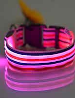 Colliers Portable Eclairage LED Ajustable Arc-en-ciel Nylon