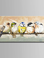 Hand-Painted  Abstract Birds Oil Painting With Stretcher For Home Decoration Ready to Hang