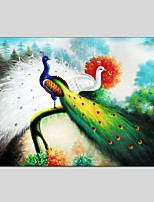 Oil Paintings Animal Style Canvas Material With Wooden Stretcher Ready To Hang Size 60*90 CM .