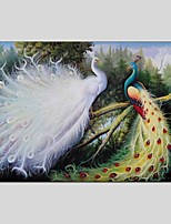 Animal Style Canvas Material Oil Paintings with Stretched Frame Ready To Hang Size 60*90 CM