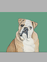 IARTS® Oil Painting Farm Sharpei Dog Portrait Wall Art Acrylic Canvas Wall Art For Home Decoration