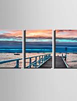 Stampa trasferimenti su tela Tre Pannelli Tela Verticale Stampa Decorazioni da parete For Decorazioni per la casa