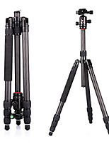 Monopod Tripod Holder/Adapter Tripod Head Shock Proof Multifunction Wearproof with Cup Stand For All Action CameraCamping/Hiking/Caving